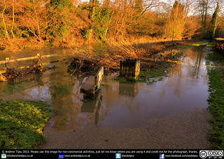 The River Mole Bursts Its Banks In Leatherhead