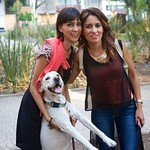 """Con Coco <a style=""""margin-left:10px; font-size:0.8em;"""" href=""""http://www.flickr.com/photos/36521966868@N01/8929275359/"""" target=""""_blank"""">@flickr</a>"""
