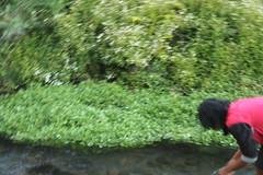 "Pendakian Sakuntala Gunung Argopuro Juni 2014 • <a style=""font-size:0.8em;"" href=""http://www.flickr.com/photos/24767572@N00/27161342165/"" target=""_blank"">View on Flickr</a>"