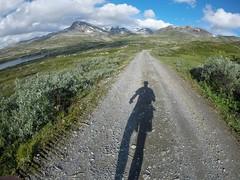 Roadwalk from Tyinholmen to Koldedalen