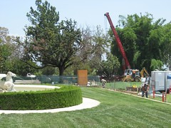 Construction at the Huntington