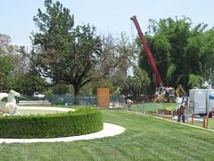 Construction at the Huntington