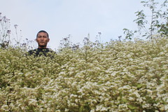 "Pendakian Sakuntala Gunung Argopuro Juni 2014 • <a style=""font-size:0.8em;"" href=""http://www.flickr.com/photos/24767572@N00/26557444253/"" target=""_blank"">View on Flickr</a>"