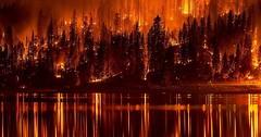 """Der Waldbrand. Die Waldbrände. Der Wald steht in Flammen. • <a style=""""font-size:0.8em;"""" href=""""http://www.flickr.com/photos/42554185@N00/28136522085/"""" target=""""_blank"""">View on Flickr</a>"""