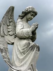 Nix Angel