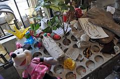 shrine table