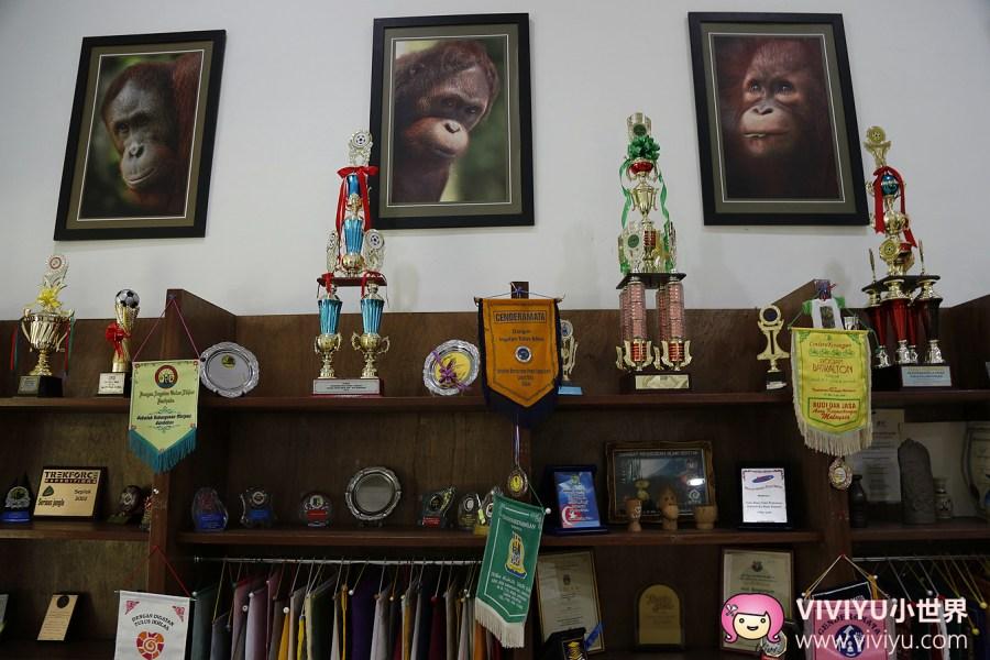 山打根,沙巴,西必洛人猿中心,馬來西亞 @VIVIYU小世界
