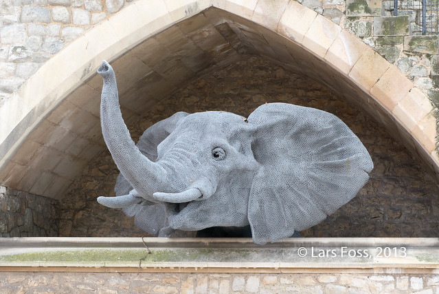 The Elephant in Tower of London