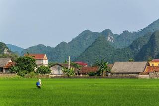 bac son - vietnam 21