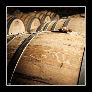 Le chai à Cognac