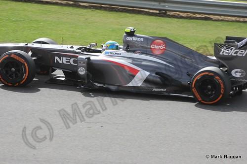 Esteban Gutierrez in Free Practice 3 at the 2013 British Grand Prix