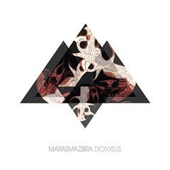 Marasma Zibra - Dyonisus