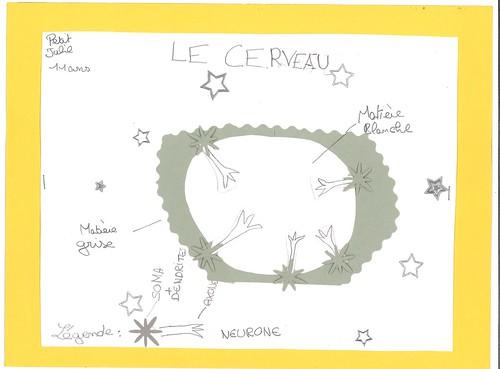 Julie Petit Matière grise blanche légende-page-0
