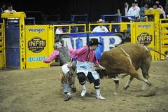 5-371 Bull FIghter