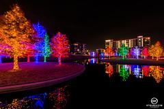Dallas Event Photographer-9783