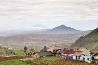 dieng plateau - java - indonesie 23