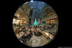 "Eaton Centre - Atrium • <a style=""font-size:0.8em;"" href=""http://www.flickr.com/photos/65051383@N05/15988782505/"" target=""_blank"">View on Flickr</a>"