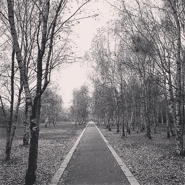 Der Weg ist das Ziel.
