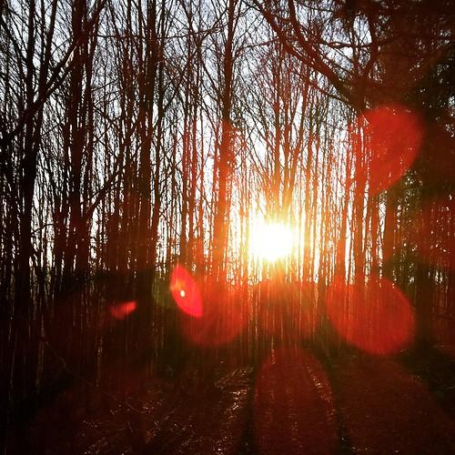 #Schwarzwald #Winter #blackforrest