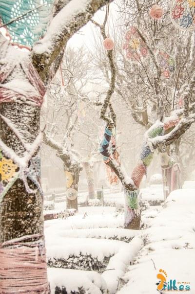 Neve na Cidade da Guarda - janeiro - 2015-32