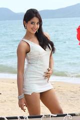 South Actress SANJJANAA Photos Set-5-Hot Piks (45)