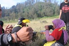 "Pendakian Sakuntala Gunung Argopuro Juni 2014 • <a style=""font-size:0.8em;"" href=""http://www.flickr.com/photos/24767572@N00/27066579572/"" target=""_blank"">View on Flickr</a>"