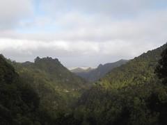 Madère vue de Caldeirao Verde