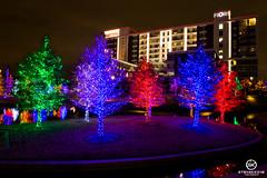 Dallas Event Photographer-9814
