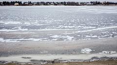 Joki jäätyy 5
