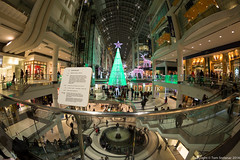 "Eaton Centre - Slipstream • <a style=""font-size:0.8em;"" href=""http://www.flickr.com/photos/65051383@N05/15801526720/"" target=""_blank"">View on Flickr</a>"