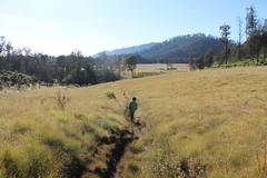 "Pendakian Sakuntala Gunung Argopuro Juni 2014 • <a style=""font-size:0.8em;"" href=""http://www.flickr.com/photos/24767572@N00/26555243954/"" target=""_blank"">View on Flickr</a>"