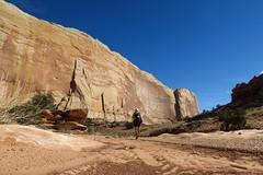 Muley Twist Canyon