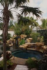 Dan Sater - Koi Pond & Pool