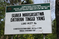 "Pendakian Sakuntala Gunung Argopuro Juni 2014 • <a style=""font-size:0.8em;"" href=""http://www.flickr.com/photos/24767572@N00/27162088705/"" target=""_blank"">View on Flickr</a>"
