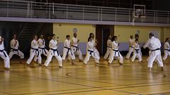 Gasshuku International FJKA 2015 - Valleiry