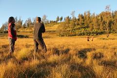 "Pendakian Sakuntala Gunung Argopuro Juni 2014 • <a style=""font-size:0.8em;"" href=""http://www.flickr.com/photos/24767572@N00/26555516764/"" target=""_blank"">View on Flickr</a>"
