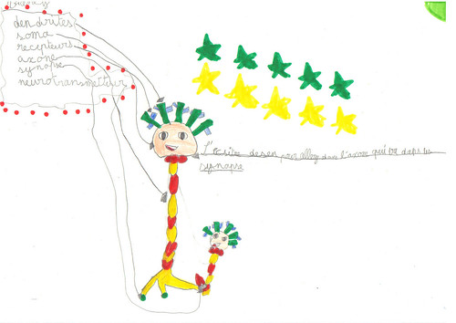 Schéma neurone & communication2