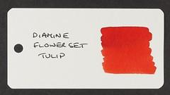 Diamine Flower Set Tulip - Word Card