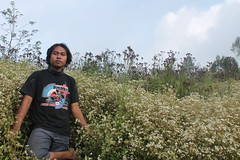 "Pendakian Sakuntala Gunung Argopuro Juni 2014 • <a style=""font-size:0.8em;"" href=""http://www.flickr.com/photos/24767572@N00/27161862285/"" target=""_blank"">View on Flickr</a>"