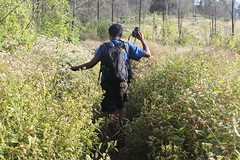 "Pendakian Sakuntala Gunung Argopuro Juni 2014 • <a style=""font-size:0.8em;"" href=""http://www.flickr.com/photos/24767572@N00/27128372376/"" target=""_blank"">View on Flickr</a>"