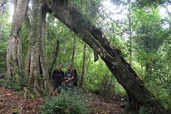 "Pendakian Sakuntala Gunung Argopuro Juni 2014 • <a style=""font-size:0.8em;"" href=""http://www.flickr.com/photos/24767572@N00/27162130775/"" target=""_blank"">View on Flickr</a>"