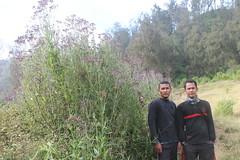 "Pendakian Sakuntala Gunung Argopuro Juni 2014 • <a style=""font-size:0.8em;"" href=""http://www.flickr.com/photos/24767572@N00/27128594926/"" target=""_blank"">View on Flickr</a>"