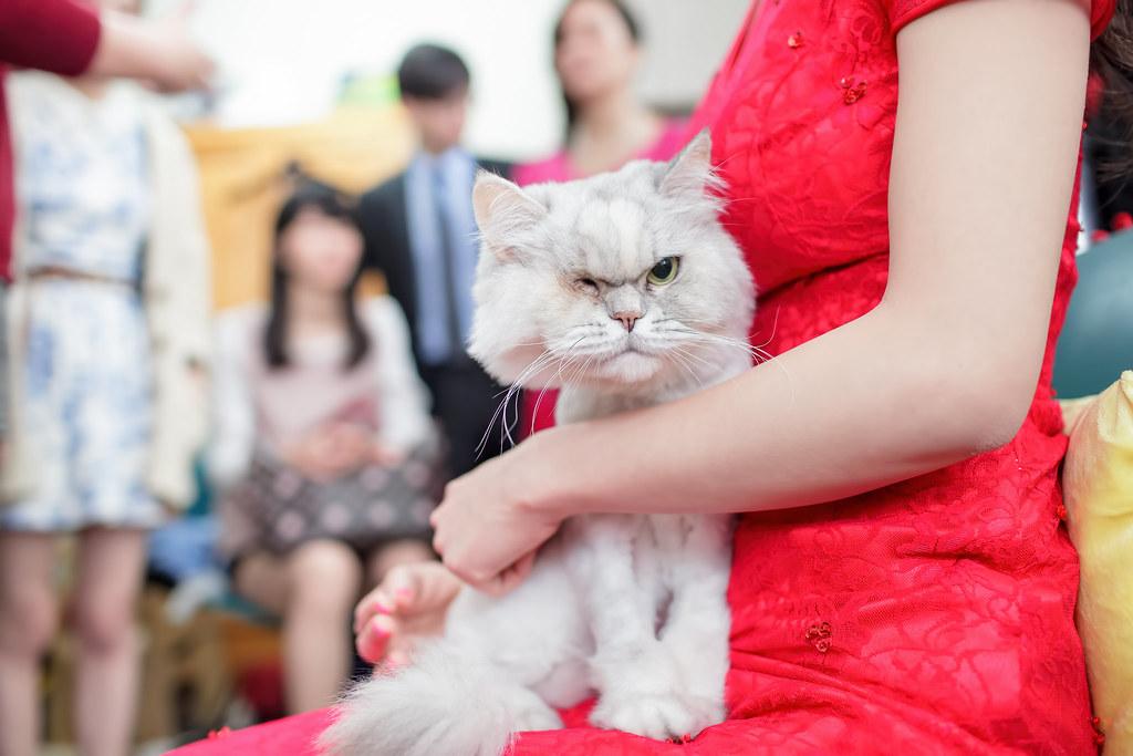 苗栗婚攝,苗栗新富貴海鮮,新富貴海鮮餐廳婚攝,婚攝,岳達&湘淳011