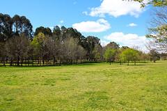 Belconnen, Canberra