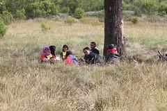 "Pendakian Sakuntala Gunung Argopuro Juni 2014 • <a style=""font-size:0.8em;"" href=""http://www.flickr.com/photos/24767572@N00/26557569463/"" target=""_blank"">View on Flickr</a>"