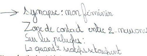 definition synapse - Copie