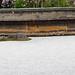 "Ryōan-ji • <a style=""font-size:0.8em;"" href=""http://www.flickr.com/photos/15533594@N00/17267740006/"" target=""_blank"">View on Flickr</a>"