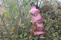 "Pendakian Sakuntala Gunung Argopuro Juni 2014 • <a style=""font-size:0.8em;"" href=""http://www.flickr.com/photos/24767572@N00/27128601076/"" target=""_blank"">View on Flickr</a>"