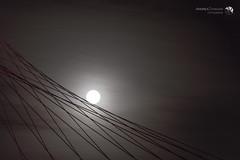 La vela e la luna 7 e finale