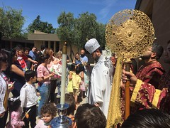 """Palm Sunday • <a style=""""font-size:0.8em;"""" href=""""http://www.flickr.com/photos/124917635@N08/46885083454/"""" target=""""_blank"""">View on Flickr</a>"""